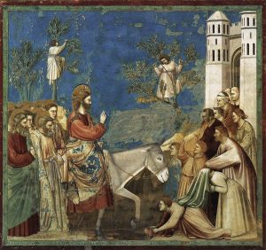 Giotto-entry-2ld75-medium