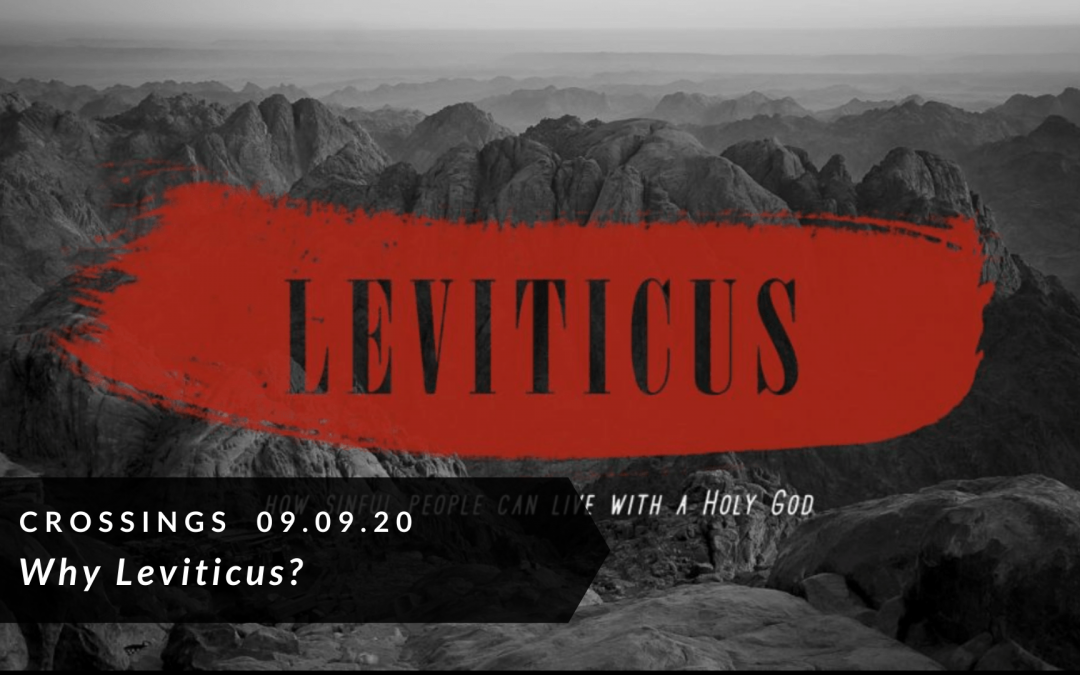 Why Leviticus?